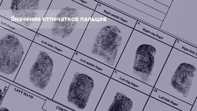 Виды отпечатков пальцев и их значение