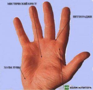 Значение линий руки