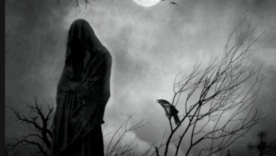 Есть ли жизнь после смерти: научные доказательства