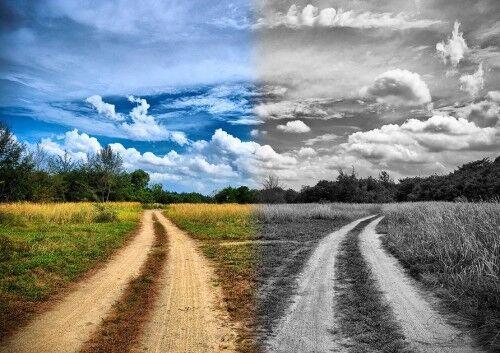 дороги в разные стороны