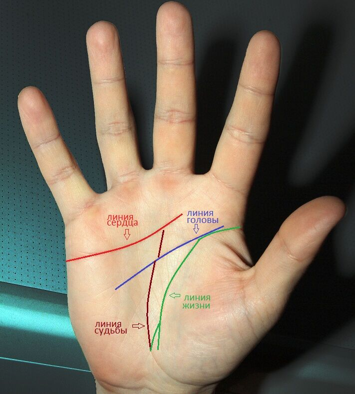 знаки любви на руке