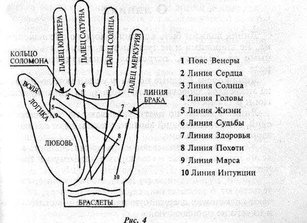 рисунок карты руки по линиям