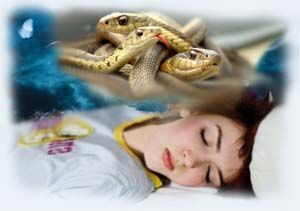 Снится змея