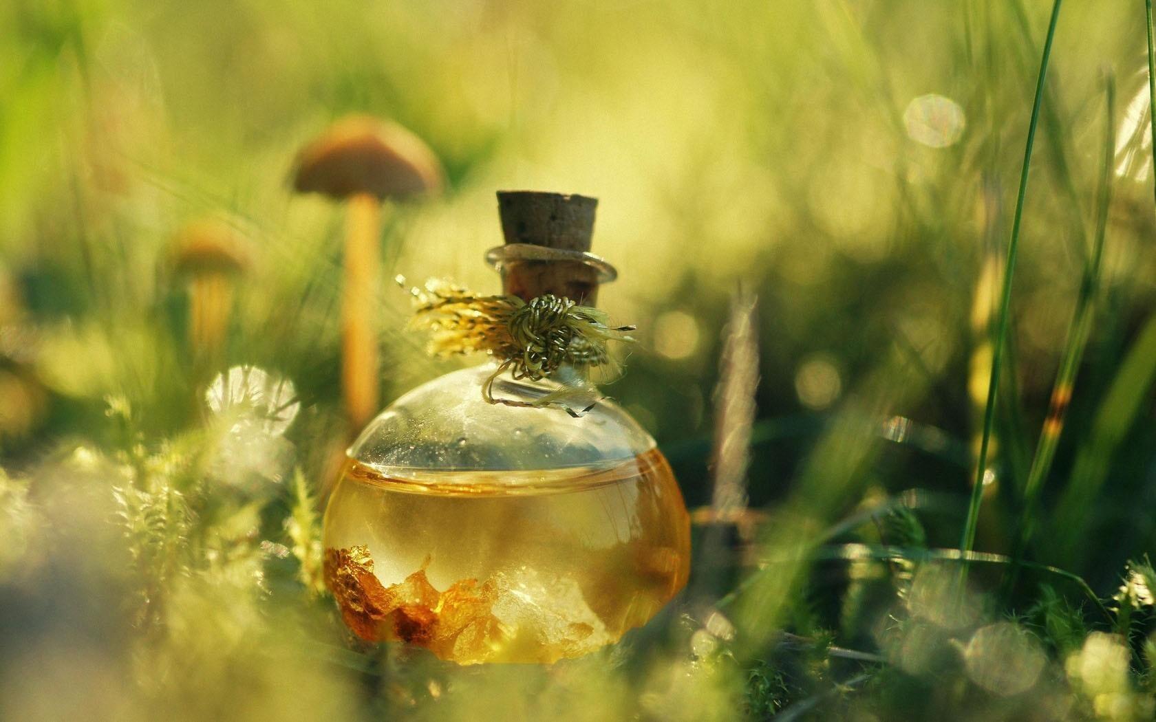 aromat-lubvi