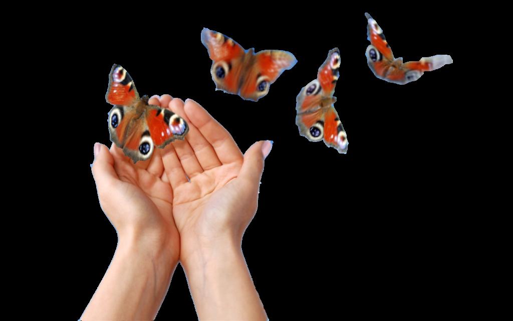 Бабочки спасения