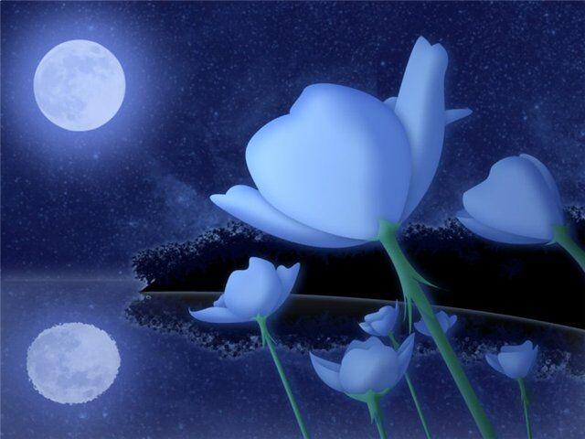 Растения Луны