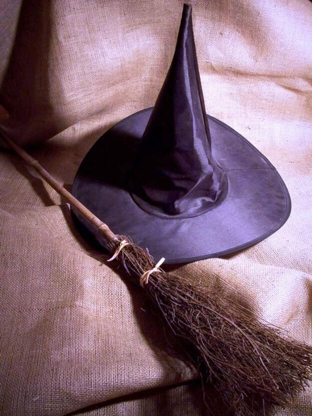 Ведьмина метла