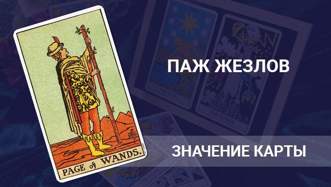 Значение карты Таро ― Паж Посохов (Жезлов)