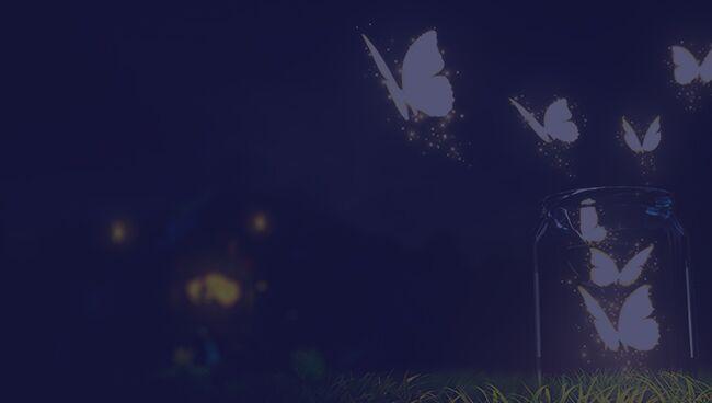 Примета бабочка залетела в тёмное время суток