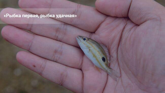 Какие заговоры читать на удачную рыбалку