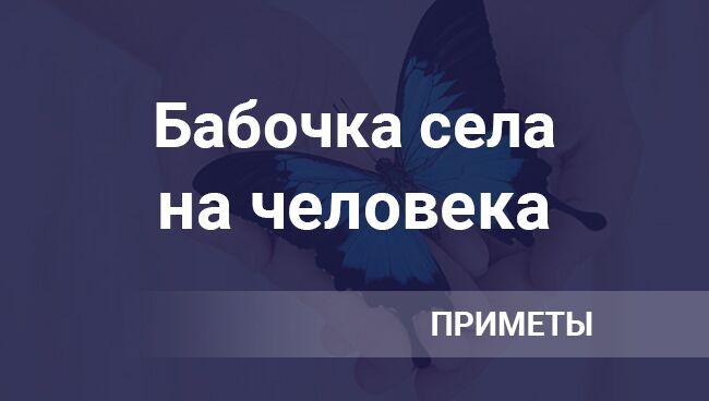 Бабочка села на человека ― примета