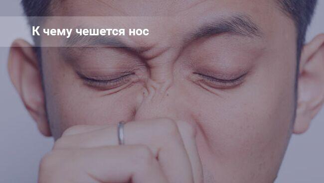 Чешется кончик носа: примета